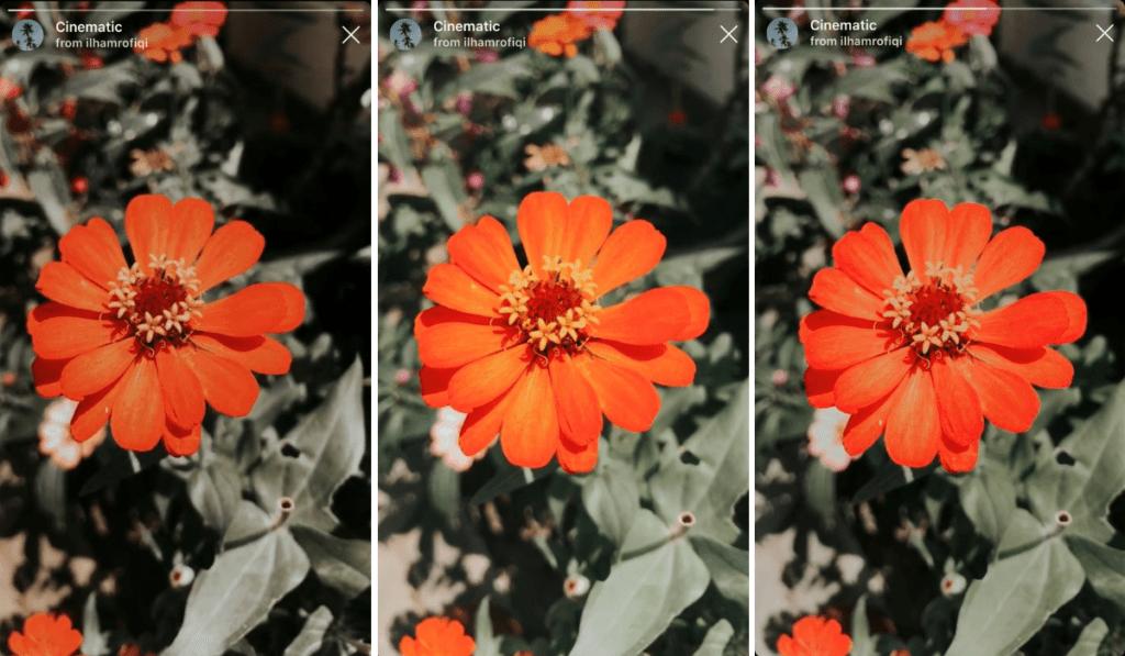 nuovi filtri